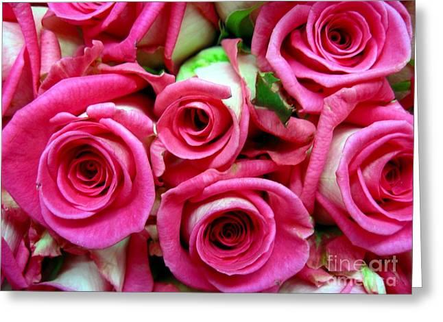 Daughter Gift Greeting Cards - Red Roses Greeting Card by John Messmer