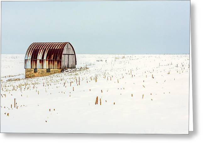 Red, Rusty Roof Greeting Card by Todd Klassy