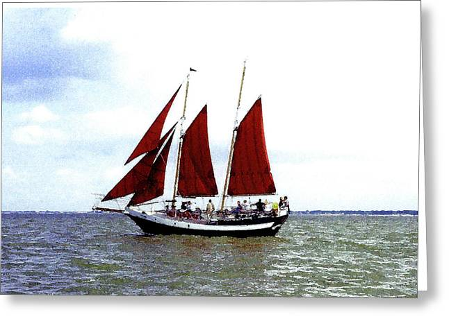 Red Sails Greeting Card by Fred Jinkins