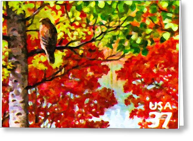 Philatelist Greeting Cards - Red-shouldered hawk Greeting Card by Lanjee Chee