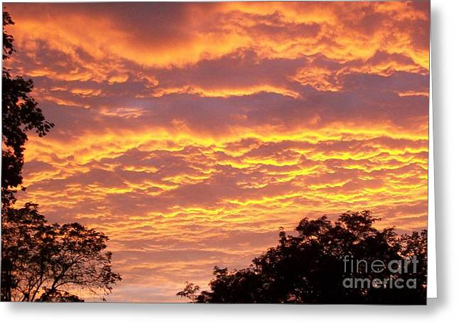 Sky Scape Greeting Cards - Red Sky Delight Greeting Card by Marsha Heiken