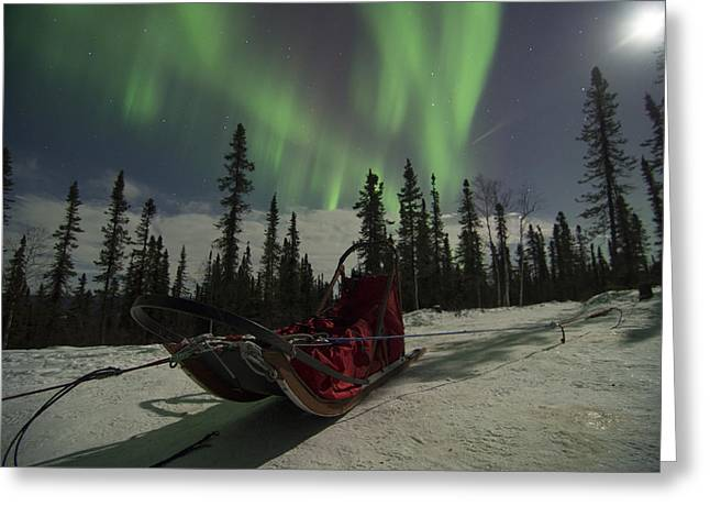 Moonrise Greeting Cards - Red-Sled Aurora Greeting Card by Ian Johnson