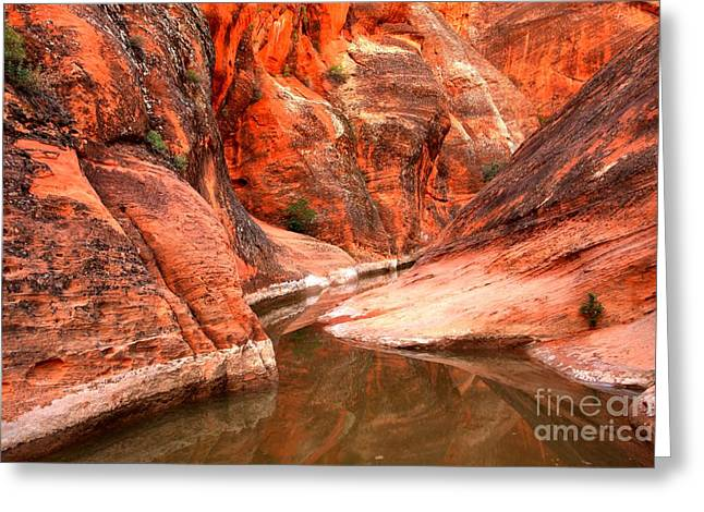 Utah Slots Greeting Cards - Red Slot Reflections Greeting Card by Adam Jewell