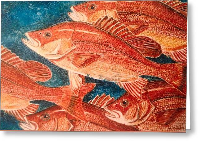 Snapper Paintings Greeting Cards - Red Snapper Greeting Card by Nancy M Garrett