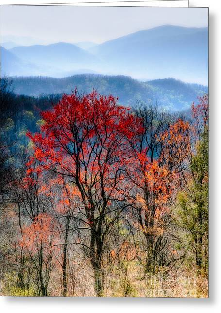 Hiking Digital Greeting Cards - Red Spring Greeting Card by Irene Abdou
