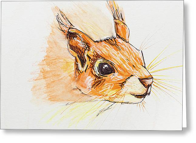 Red Squirrel Face Greeting Card by Stefanie Forck