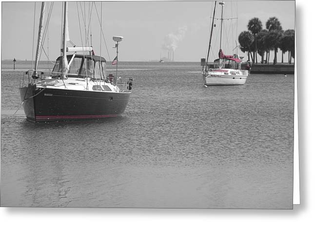 Sailboats At The Dock Greeting Cards - Red Stripes Greeting Card by Debby Polis Carter