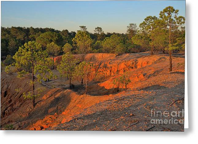 Red Sunset Cliffs Greeting Card by Angelo DeVal