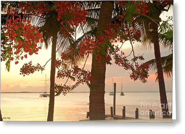 Romantic Art Greeting Cards - Red Sunset Greeting Card by Judy Kay