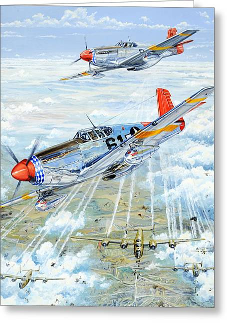 Fighter Aircraft Greeting Cards - Red Tail 61 Greeting Card by Charles Taylor