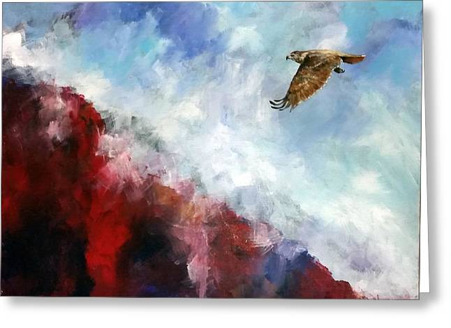 Red Tail Greeting Card by David  Maynard
