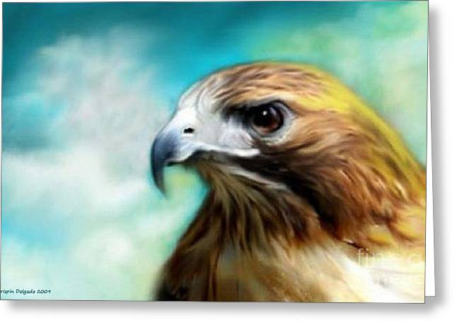 Red Tail Hawk Digital Art Greeting Cards - Red Tail Hawk  Greeting Card by Crispin  Delgado