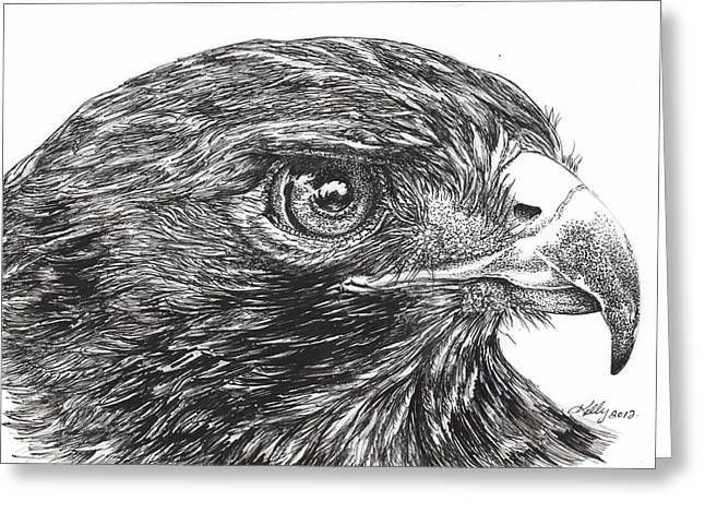 Hawk Drawings Greeting Cards - Red Tail Hawk Greeting Card by Kathleen Kelly Thompson