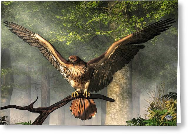 Red Tailed Hawk Greeting Card by Daniel Eskridge