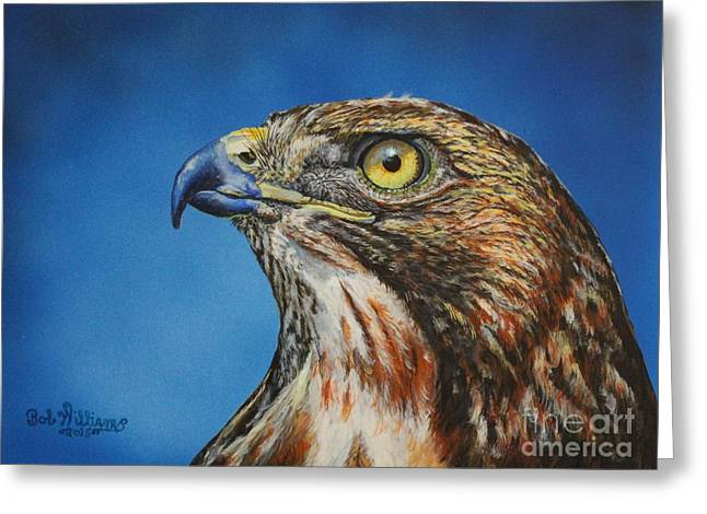Red-tailed Hawk......honor Greeting Card by Bob Williams