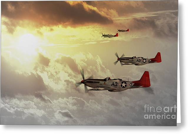 Tuskegee Airman Greeting Cards - Red Tails Greeting Card by J Biggadike
