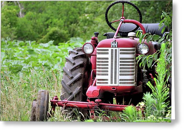 Red Tractor  Greeting Card by Janice Drew