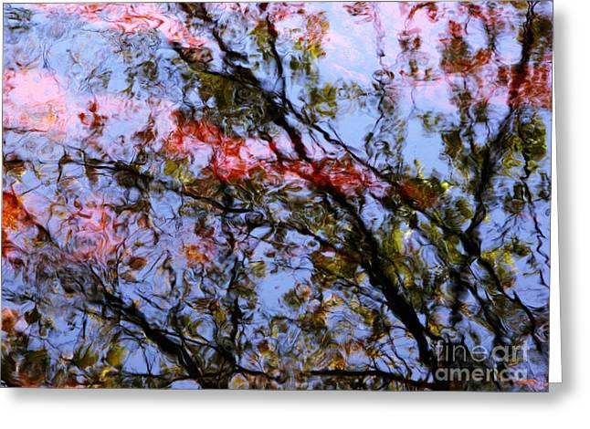 Glassy Lake Surface Greeting Cards - Red Trees 2 Greeting Card by Joanne Baldaia - Printscapes