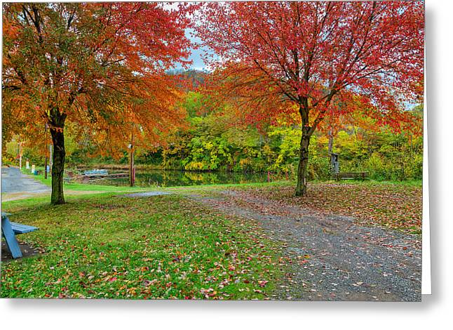 Stream Greeting Cards - Red Trees Gray Day Greeting Card by John Bailey