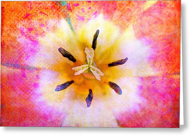 Red Tulip Greeting Card by Moon Stumpp