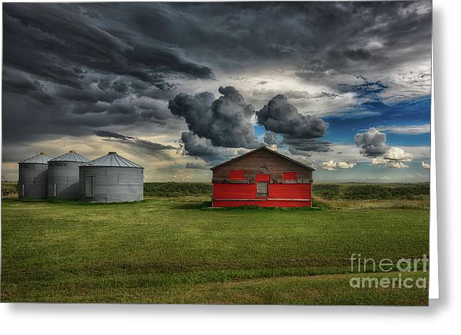 Red Under Grey Greeting Card by Ian McGregor