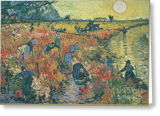 Red Vineyards At Arles Greeting Card by Vincent van Gogh