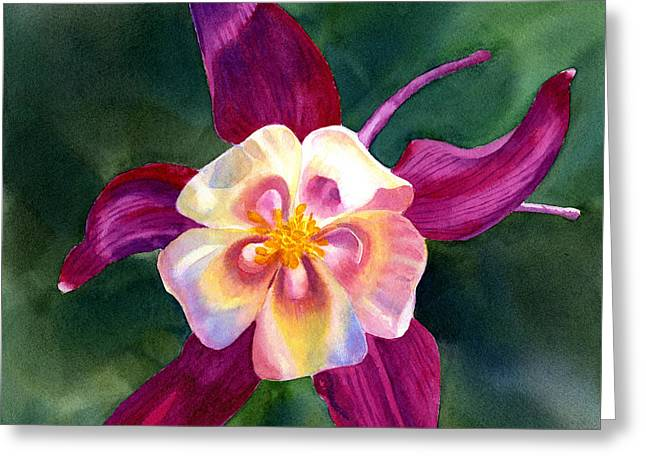 Columbine Greeting Cards - Red Violet Columbine Blossom Square Design Greeting Card by Sharon Freeman