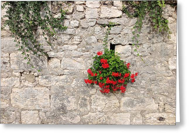 Red Geraniums Greeting Cards - Red Wallflowers Greeting Card by Anthony Robinson