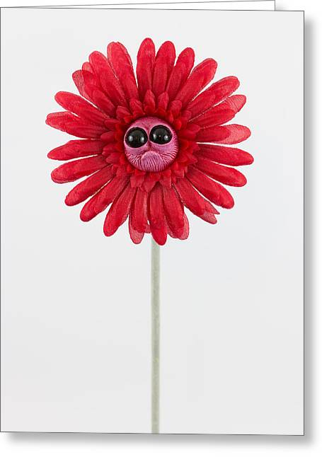 Loving Sculptures Greeting Cards - Red Worried Flower Greeting Card by Michael Palmer