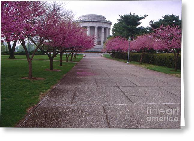 Vincennes Greeting Cards - Redbuds in Vincennes Indiana Greeting Card by Lowell Anderson