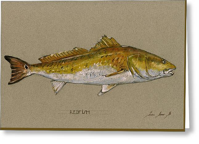 Fishing Art Print Greeting Cards - Redfish painting  Greeting Card by Juan  Bosco
