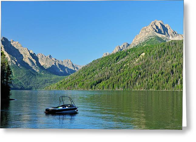 Sawtooth Mountain Art Greeting Cards - Redfish Relaxation Greeting Card by Greg Norrell