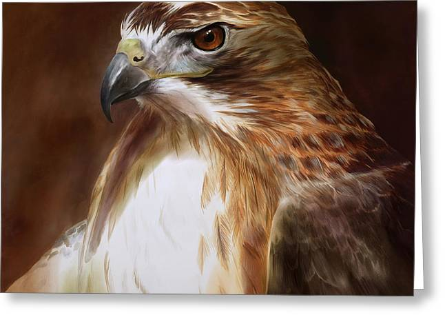 Tails Paintings Greeting Cards - RedTailed Hawk Portrait Greeting Card by Steve Goad