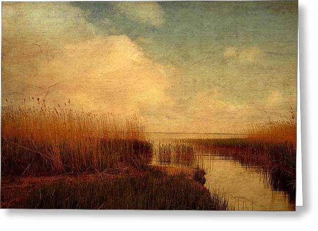 Summer Storm Greeting Cards - Reed Greeting Card by Heike Hultsch
