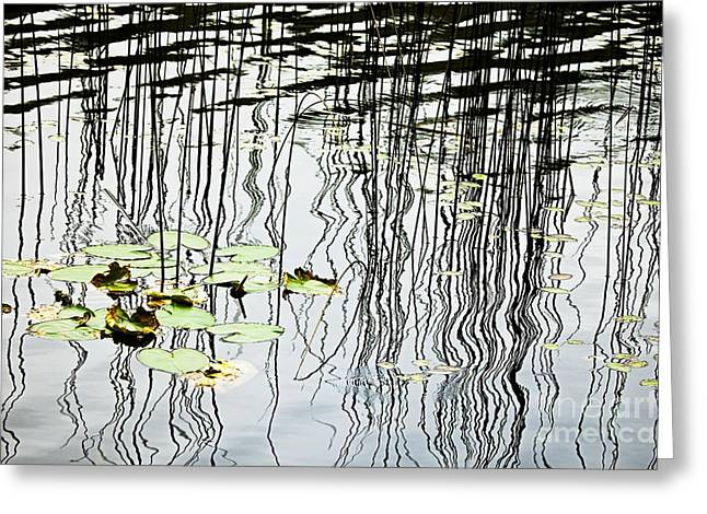 Reeds And Reflections Greeting Card by Dave Fleetham - Printscapes
