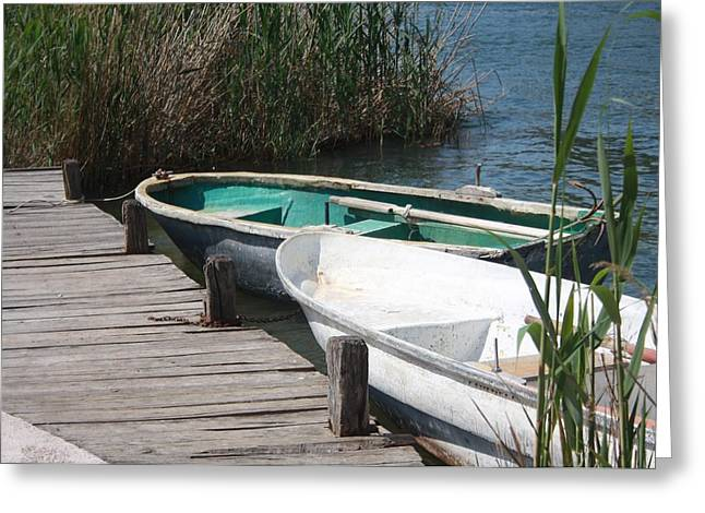 Morass Greeting Cards - Reeds Rowing Boats and Old Jetty at Dalyan Greeting Card by Tracey Harrington-Simpson