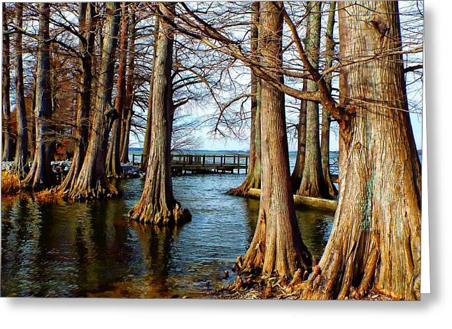 Reelfoot In Winter II Greeting Card by Julie Dant