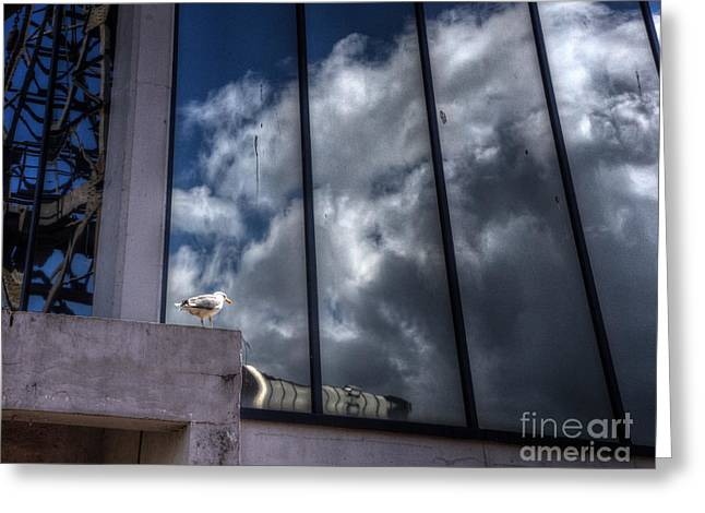 Glass Reflecting Greeting Cards - Reflected Clouds Greeting Card by Nigel Bangert