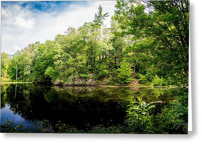 Alga Greeting Cards - Reflected Island on a Lake Greeting Card by Joshua Zaring
