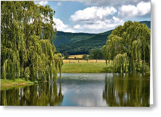 Weeping Greeting Cards - Reflecting All Who Take Time to Stop Greeting Card by Jeannee C Gannuch
