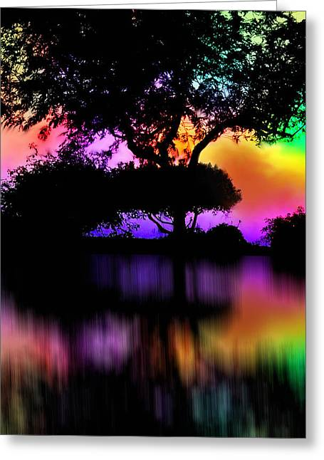 Color Enhanced Greeting Cards - Reflecting Color Greeting Card by Kathy Franklin
