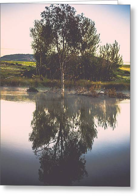 Photo Art Gallery Greeting Cards - Reflection Greeting Card by George Fivaz