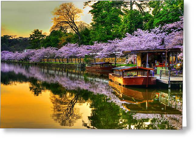 Reflection In Gold Greeting Card by Midori Chan