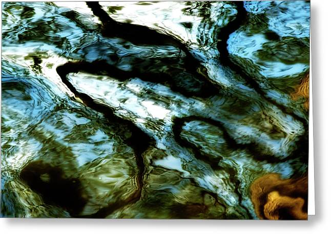 Refraction Greeting Cards - Reflection in water Greeting Card by Bernard Jaubert