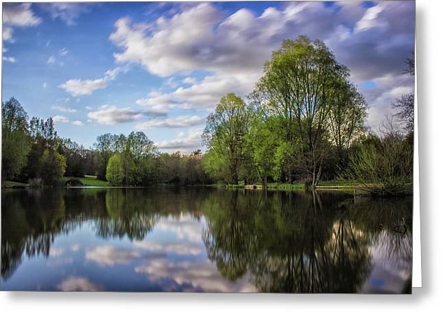 Reflection Greeting Card by Martin Newman