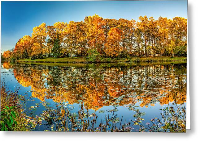 Reflection Of Fall Greeting Card by Nick Zelinsky