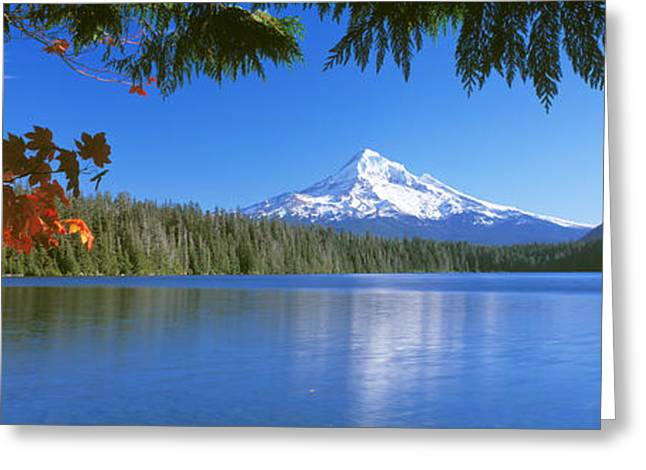 Mt Hood Greeting Cards - Reflection Of Mountain In A Lake, Lost Greeting Card by Panoramic Images
