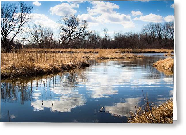 Reflection On The Fox River Greeting Card by Jeanette Fellows