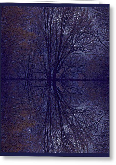 Reflection On Trees In The Dark Greeting Card by Joy Nichols