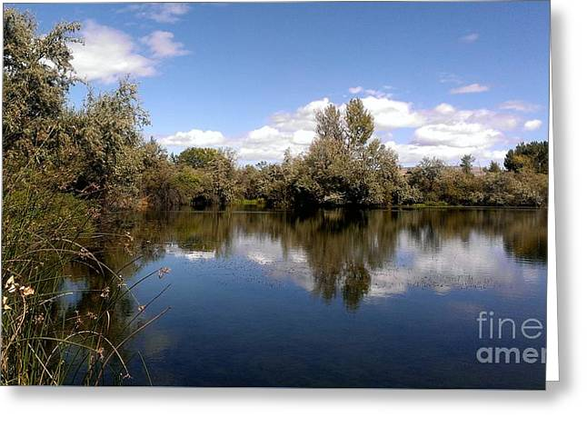 Reflecting Water Greeting Cards - Reflection Pond Greeting Card by LKB Art and Photography